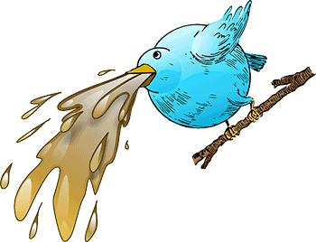 نکات منفی نگهداری پرنده
