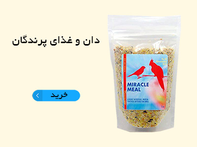 دان و غذای پرندگان