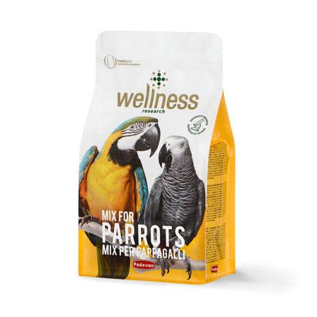 غذای سوپرپریمیوم کاسکو و آراWellness Parrots