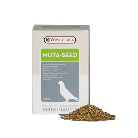 موتا سید | muta-seed